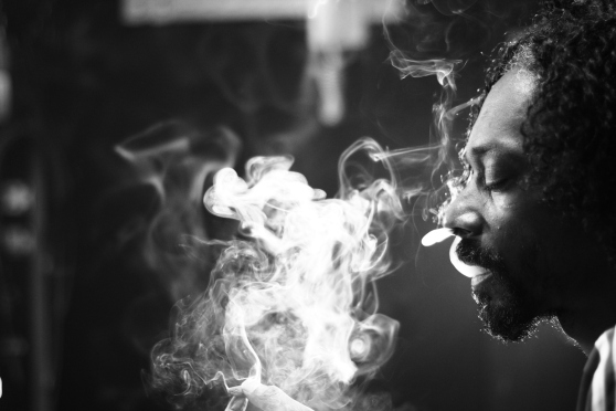 Expressive Snoop